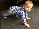 Bub Crawl